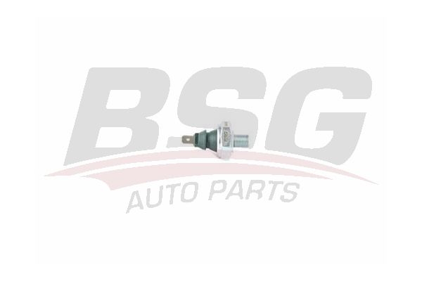 BSG 90-840-039 Yağ Müşürü